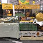 Parmigiano Reggiano vacche rosse Grana d'Oro a Cheese 2019 Bra
