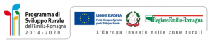 Contributo Unione Europea